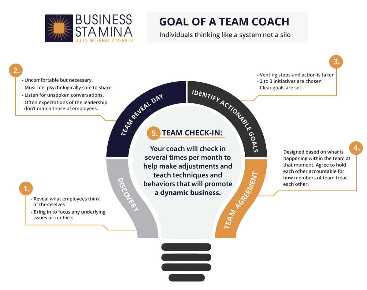 Goal of a Team Coach Infographic